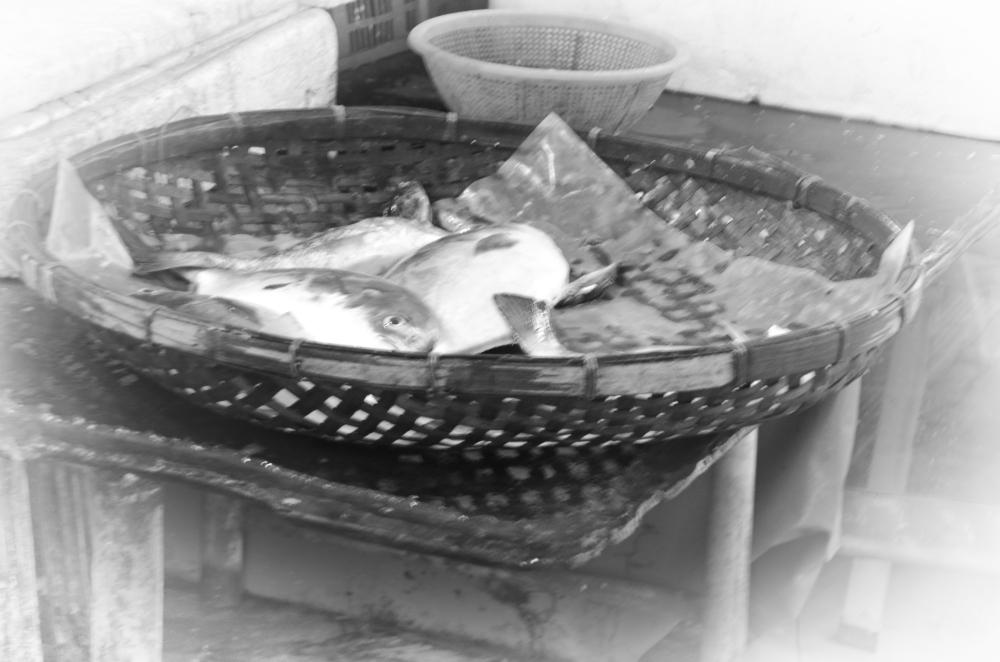Tai O fish market